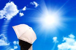 強い日差しと日傘