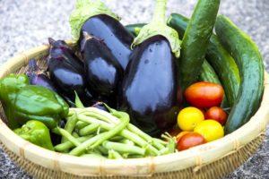 ナスと夏野菜