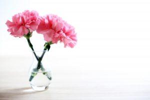 カーネーション(切り花)