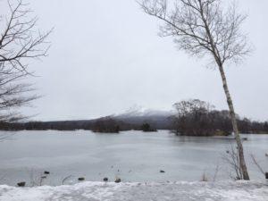 冬の大沼公園