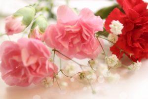 母の日にお花の贈り物