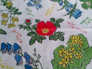 六花亭の包装紙_自然画家の坂本直行の絵