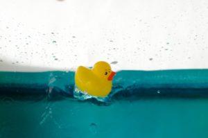 水の中のアヒル