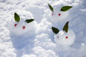 親子の雪うさぎ