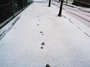 雪道の足跡