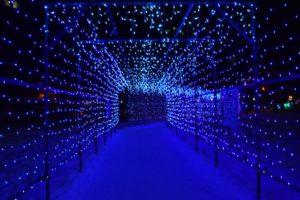 光りのトンネル